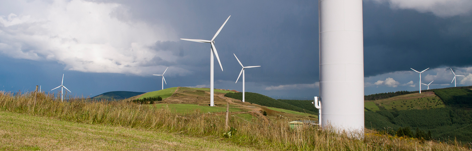 Windpark, wind farm